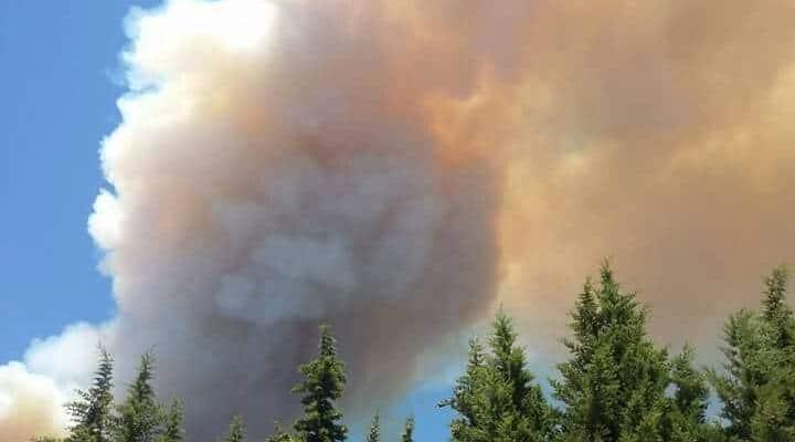 Vesuvio in fiamme, incendio sembra l'eruzione del vulcano FOTO
