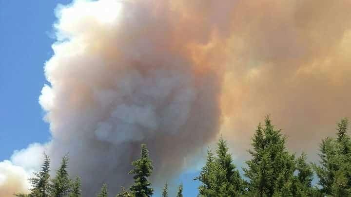 Il Vesuvio è in fiamme. Un violentissimo incendio è divampato nella parte sud. Tutte le forze in campo per domare il vasto e potente incendio
