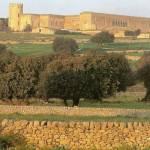 Immerso in una zona in cui la campagna siciliana appare quasi incontaminata si erge il Castello di Donnafugata.