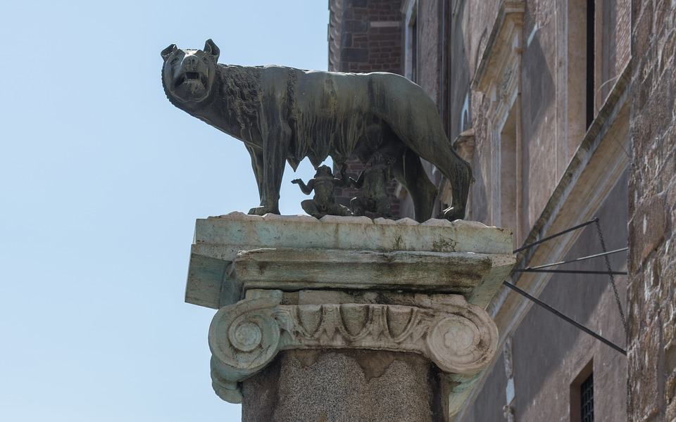 Roma - L' Assessore all'Ambiente Montanari ritiene che pecore e caprette potrebbero far da tagliaerba nei giardini e nelle ville storiche della capitale. I pro e i contro di tale proposta