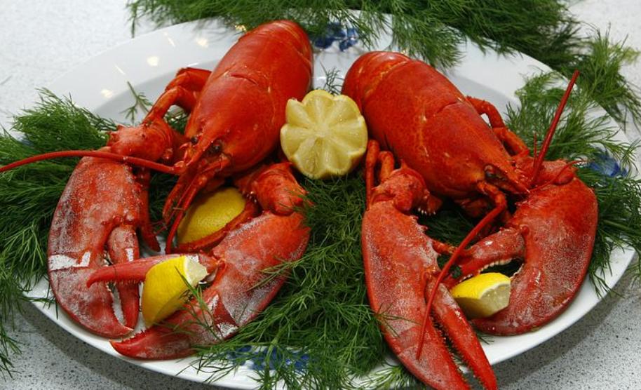 L'Aragosta, la regina dei crostacei, 3 ricette per cucinarla alla perfezione, partendo dalla più semplice alla più complicata, affinché possiate prepararla in semplicità senza preoccuparvi di sprecare questo tesoro del mare.