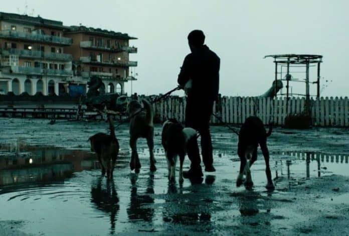 """E' """"Dogman"""" di Matteo Garrone il film italiano scelto come candidato all'Oscar per il miglior film in lingua straniera"""