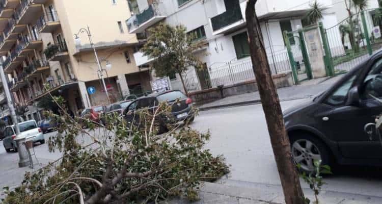 Raffiche di vento - Diverse segnalazioni stanno arrivando nelle ultime ore da parte dei cittadini dei comuni di Pompei e Scafati.