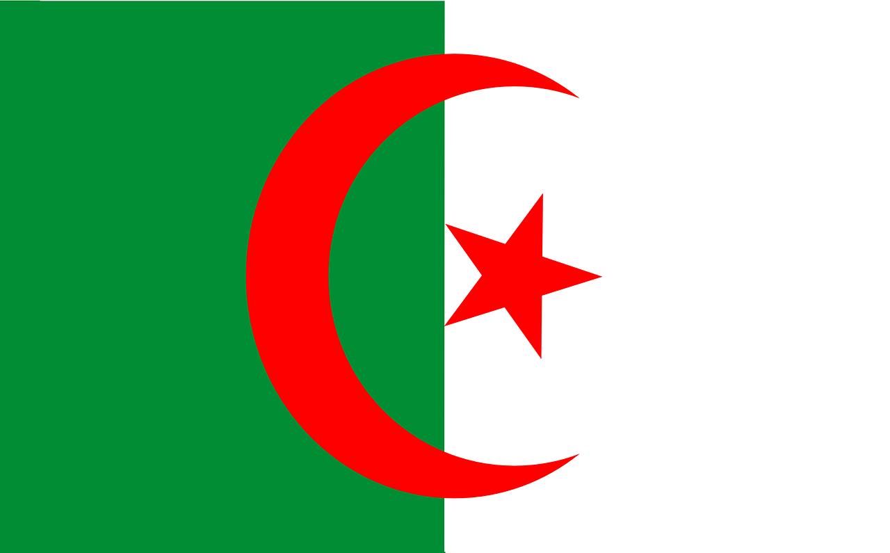 L'Algeria è scossa da proteste contro l'attuale governo e in particolare contro la possibilità di un quinto mandato di Bouteflika.