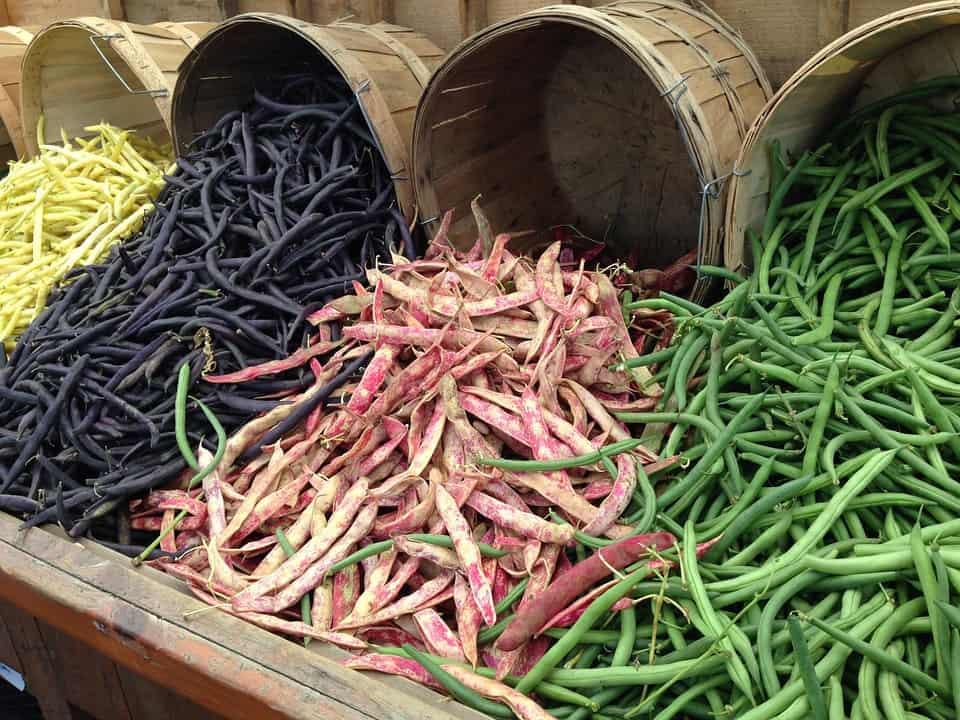 Consumare alimenti di stagione è sempre la scelta consigliata.Per un pieno di energie,gli esperti consigliano il consumo di prodotti biologici