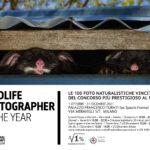 56° Wildlife Photographer of The Year